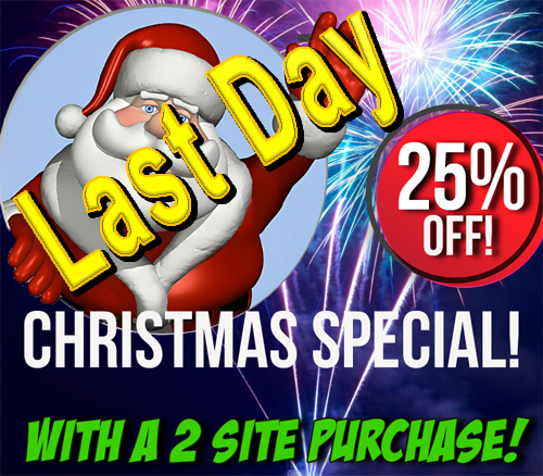 25 Percent off 2 Site Purchase